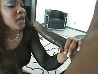 Adina Jewel gets a thick black cock for anal