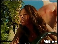 Big Rack Ebony Fucking Outdoors