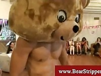 Teddy bear stripper gets blowed balls deep