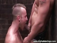 Gay couple in outdoor oral sex
