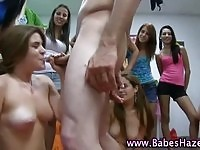 Charming college babes humiliated by sucking large cock