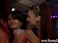 Seductive babes partying and sharing strippers cock