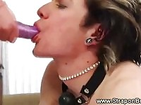 Busty dominant babe screwing males ass with strapon