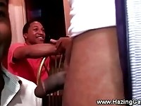 Ghetto dudes tugging and gagging frats hard cock
