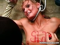 A Hungarian slut humiliated in here