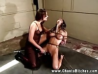 A tied up lesbian licking boots
