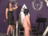 Lusty brunette domina humiliating her subject