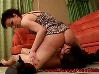 Sweet brunette domina gets her twat eaten by a subject