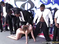 Brunette whore sucking black dongs